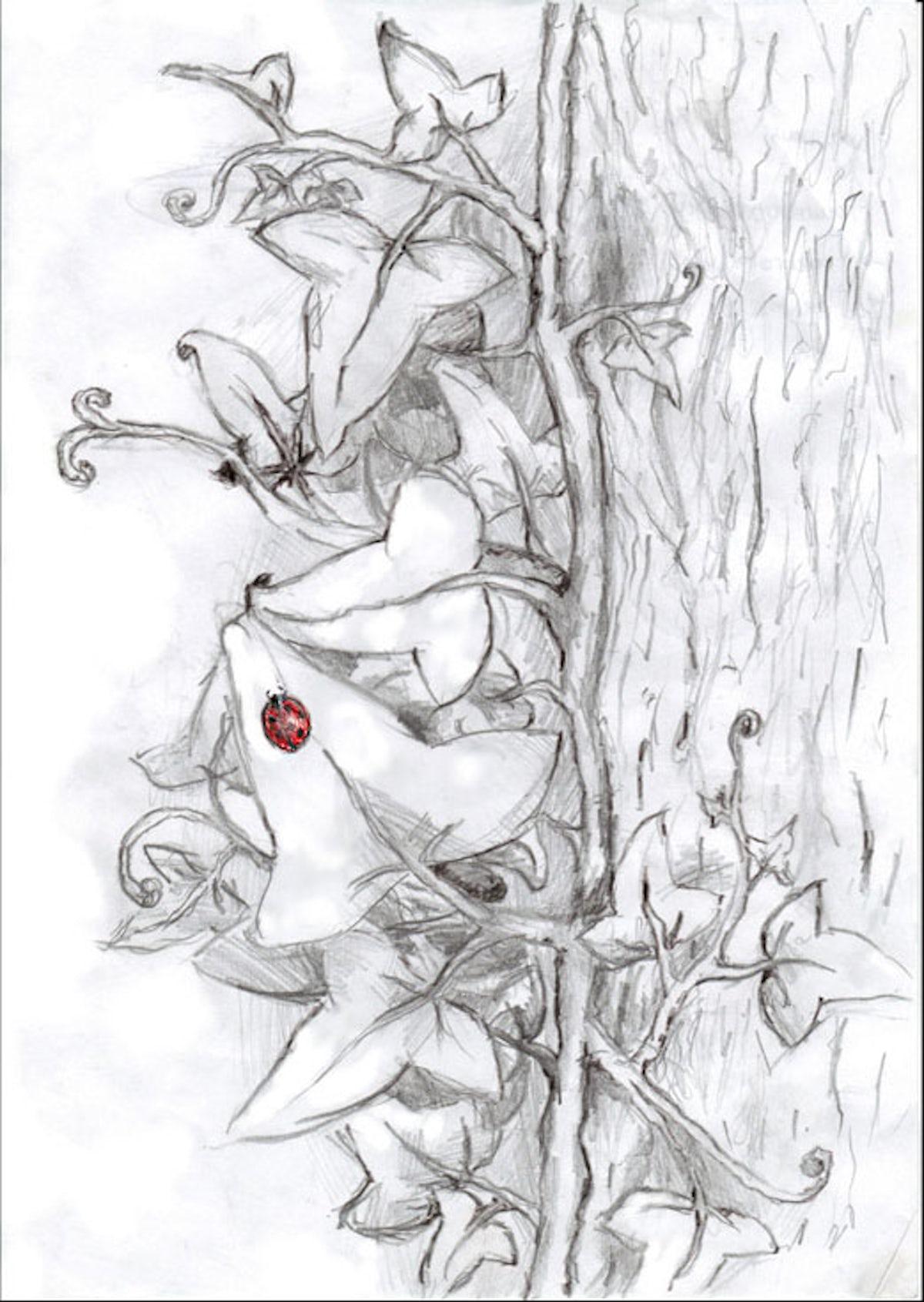 pencil_drawing_002.jpg